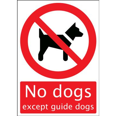 No Dogs Except Guide Dogs Safety Sign - Portrait