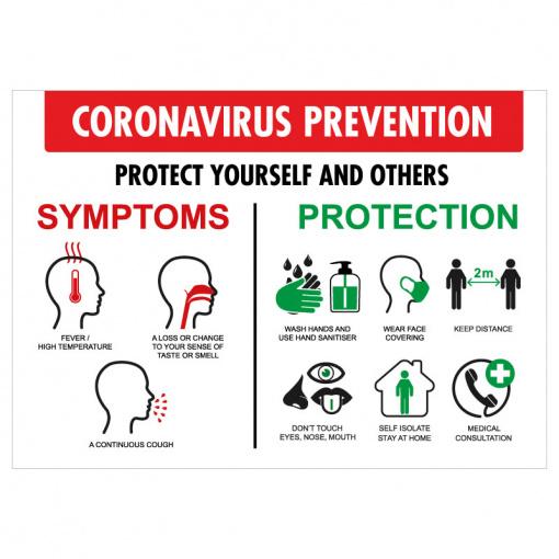 BLZ-COV19-15 Coronavirus Symptoms & Prevention Poster